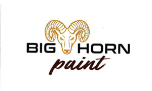 Read more about the article Big Horn Paint